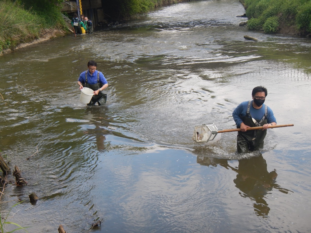 Ronald (right) Kick-sampling for macro-invertebrates in the Dijle river, May 2021 © SUSDEV